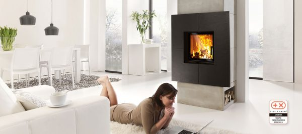 Wood Burning Stove In Cork